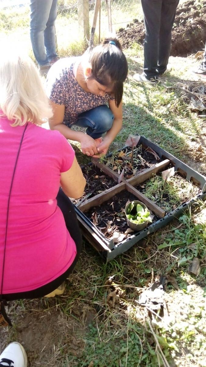 curso-de-jardinera_34461803051_o