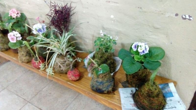 curso-de-jardinera_34551079276_o