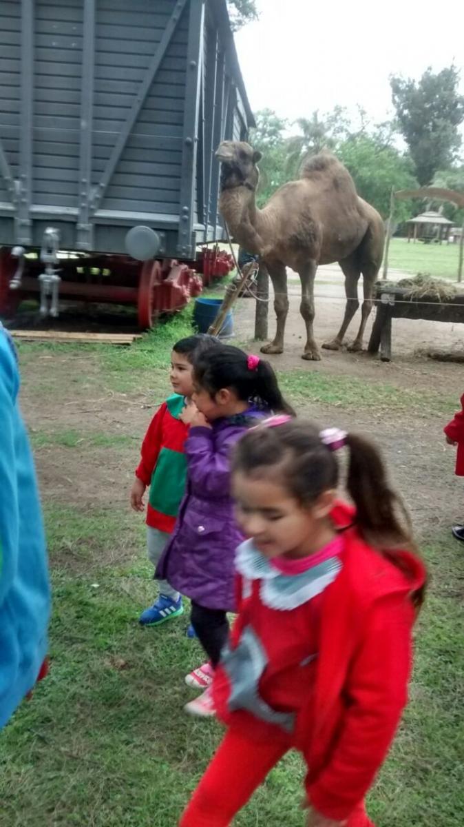 visita-al-zoo-de-lujn_30602664881_o